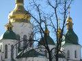 Иерархов УПЦ МП собирают на встречу с Порошенко