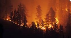 Кому выгодны пожары и наводнения?