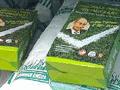 Путин рекламирует газонную траву:  Преврати свою лужайку в стадион