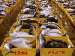 Южная Корея запретила ввоз морепродуктов из Фукусимы и еще 7 префектур