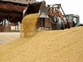 Россия в следующем году может ощутить нехватку продовольствия