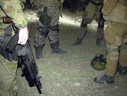 Спецподразделение СБУ начало охоту на граждан Чехии и Словакии. СИЗО приветствовало европейцев