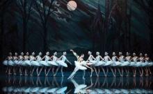 """""""Лебединое озеро"""": непростая история шедевра Чайковского"""